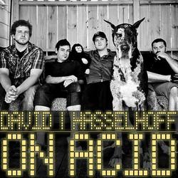 David Hasselhoff On Acid