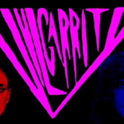 VulGarrity