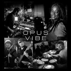 Opus Vibe
