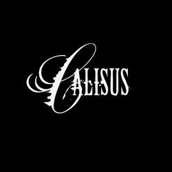 Calisus