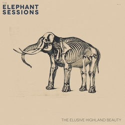 The Elephant Sessions