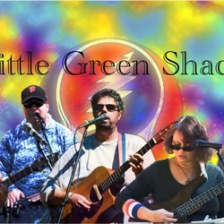 Little Green Shack