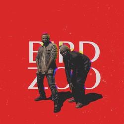 Bird Zoo
