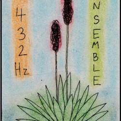 The 432 Hz Ensemble