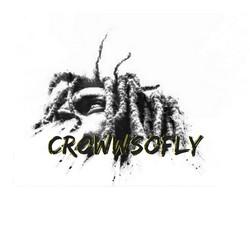 CrowWsoFly