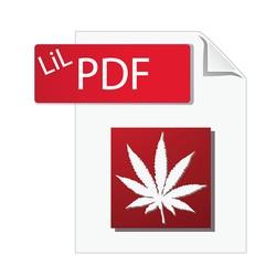 LiL PDF