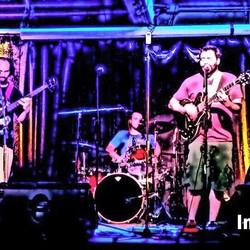 The Insinuators