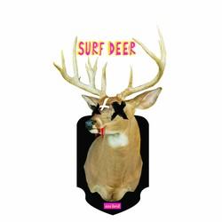 Surf Deer