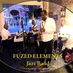 Fuzed Elements