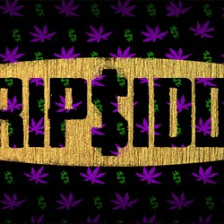 Trip$iddy