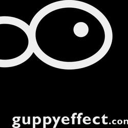 Guppy Effect
