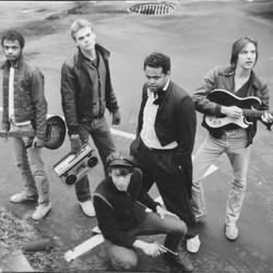 The Auburnaires