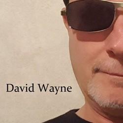 David Wayne Guitarist