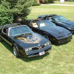 The Trans AMs