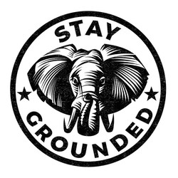 Stay Grounded