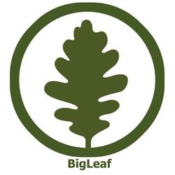 BigLeaf