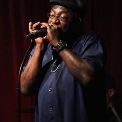 Roharpo The Bluesman & The Real Blues Band