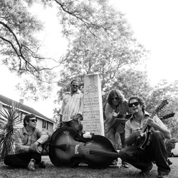 The Mark Schimick String Band