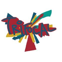 Trifocal