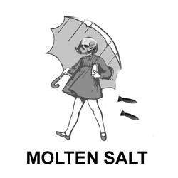 Molten Salt
