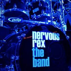 Nervous Rex The Band