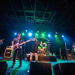 Paradise Rose - The Ultimate Guns N' Roses Tribute Band