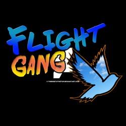 team flight