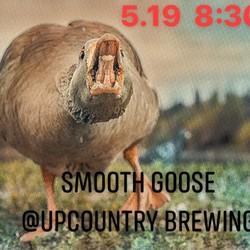 Smooth Goose