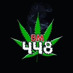 BM448