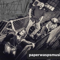 Paper Wasps