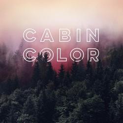 Cabin Color