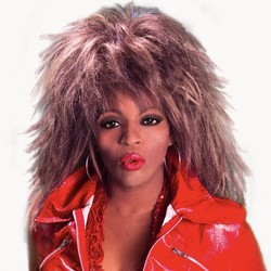 Ultimate  Tina Turner Tribute Band