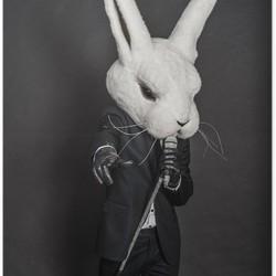 Swamp Rabbit Blues Band