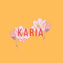 Karia - FAKE MUSICIAN MUSIC 209