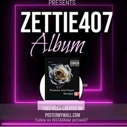 ZETTIE407Fl