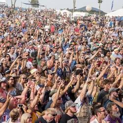 FEST: ROCKN' to LOCKN' (VA)