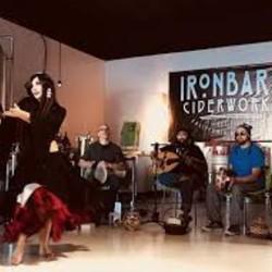 PLAY: Ironbark Ciderworks (CA) Summer