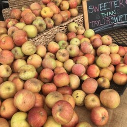 PLAY: Bixby Knolls Farmers' Market (LA) (Fall/Winter)