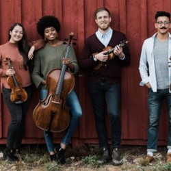 HIRED: Professional String Quartets Needed (MA) (Fall/Winter)