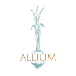 PLAY: Allium (VT) - Winter