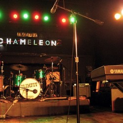 PLAY: Chameleon Pizza (OH) Winter