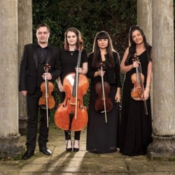 HIRED: Professional String Quartets Needed (MA) (Winter/Spring)