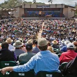 FEST: Monterey Jazz Festival (CA)