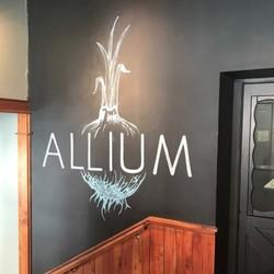 Allium (VT) Spring