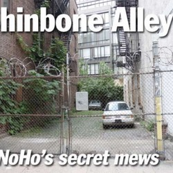 PLAY: The Shinbone Alley Sessions (NY) - Summer/Fall