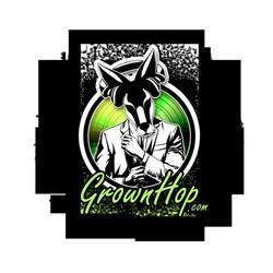 PLAY: Grownhop Music Showcase (TX) - Fall