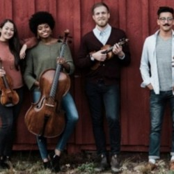 HIRED: Professional String Quartets Needed (MA)