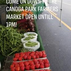 PLAY: Canoga Park Farmers Market (CA)