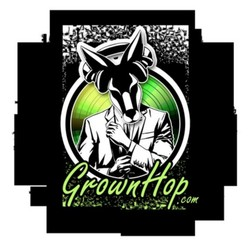 PLAY: Grownhop Music Showcase (TX)