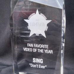 REMOTE: International Independent Music Video Awards